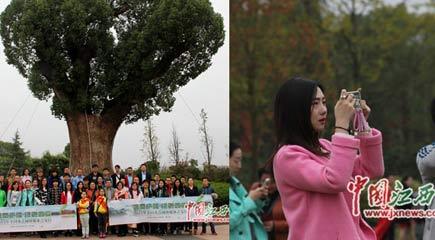网媒记者走进庐陵生态园