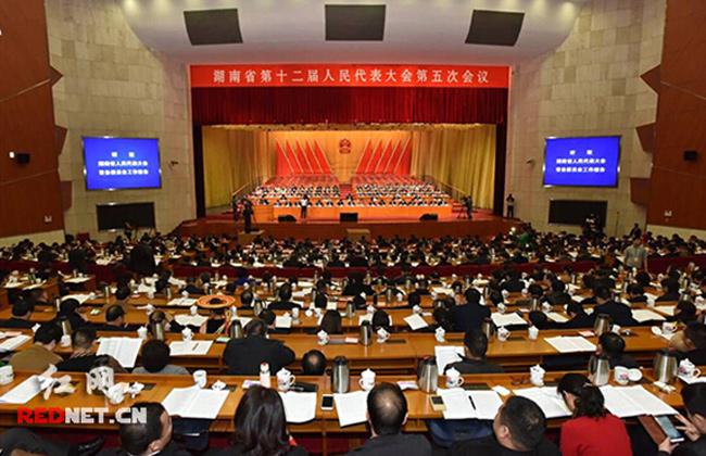 湖南十二届人大五次会议举行第二次全体会议