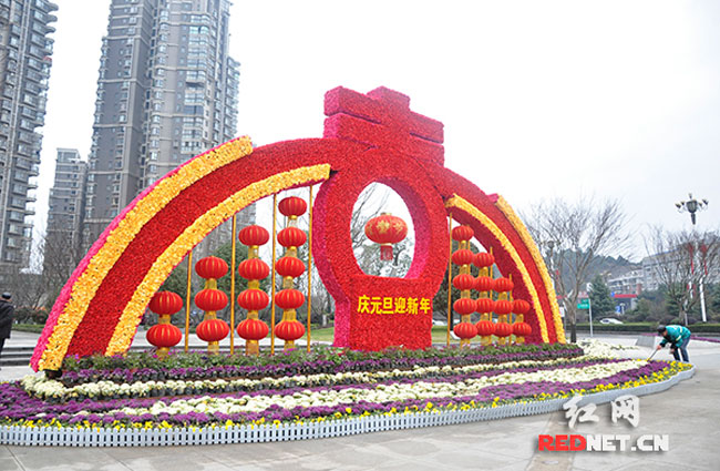 【星城美】岳麓园林装扮鲜花、清扫绿地迎新春