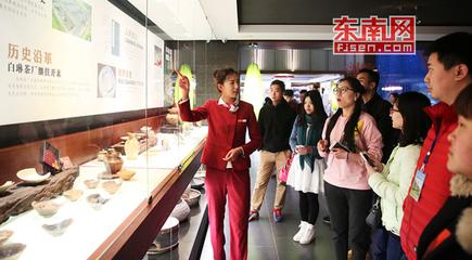 全国网络媒体记者文化体验馆里感受白茶文化之旅