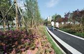 长沙南大门提质 近百亩绿化扮靓雀园路