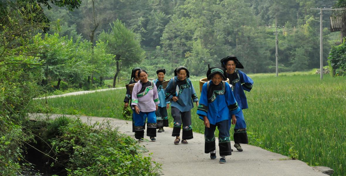 早上八点半,赶集归来的苗家阿婆们身着苗服,背着沉甸甸的小背篓,唱着苗歌,行走在蜿蜒的水泥路上。