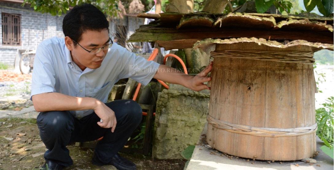 面对蜂桶,常人都会后退避让几步,罗勇笑着说,蜜蜂懂感情不会伤着我。