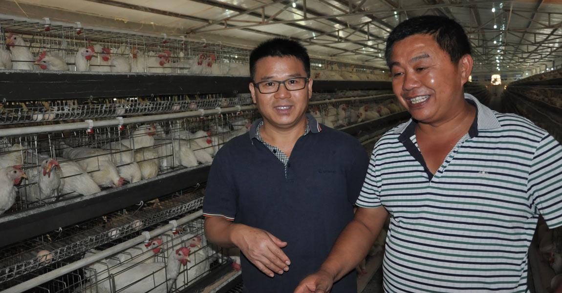 """""""捡蛋就是捡钱,每送一次蛋有一万多元的进账。""""李仕辉(右)笑得合不拢嘴了,图为湖南省农科院专家(左)对养殖基地提供技术指导。"""