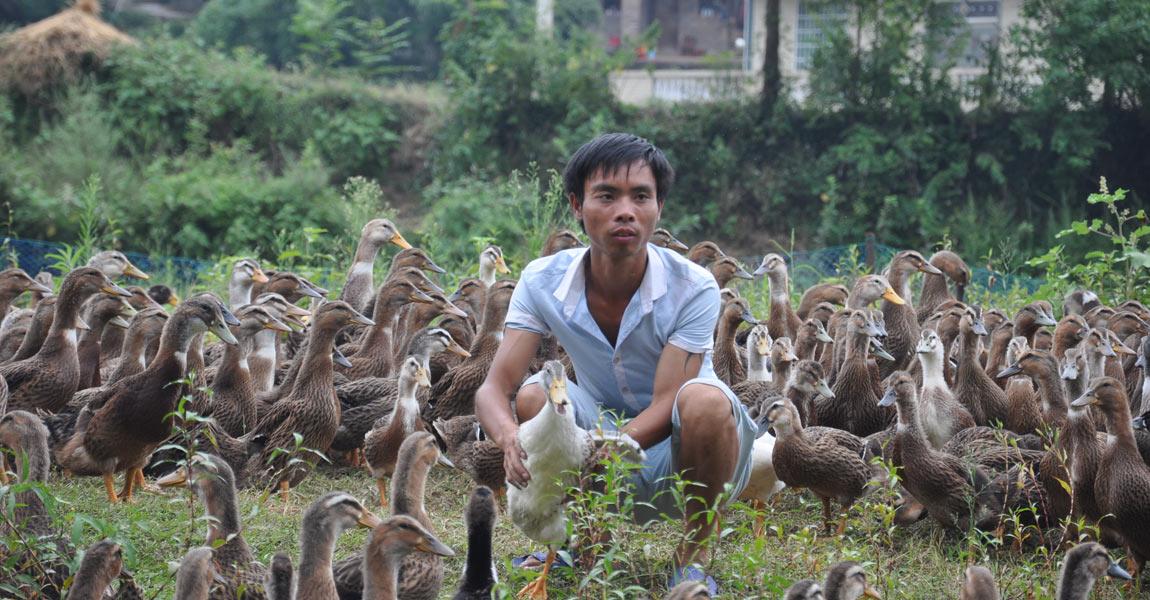 """""""打工不是长久之计,还不如回家搞养殖。""""正在河边喂鸭的长坪村村民向玉生回家贷款干起了养殖,着实开办了一个""""动物园""""。"""