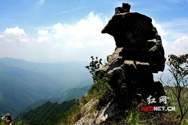 湖南八面山国家级自然保护区