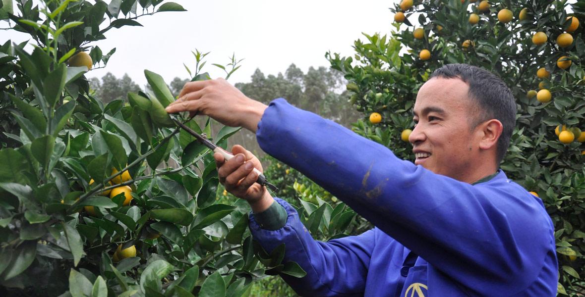 30岁的单身汉黄大丰,晚上与乡亲们一起演出,白天就在地里忙活。