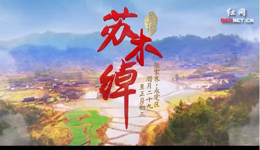 《直播苏木绰》宣传片