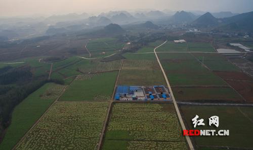 【脱贫致富在湖南】花垣:看看十八洞以外的那些土地