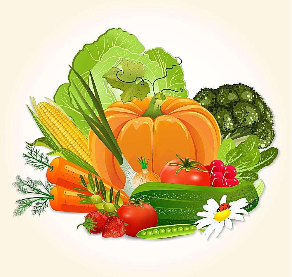 """关于蔬菜认识上的几个""""误区"""""""