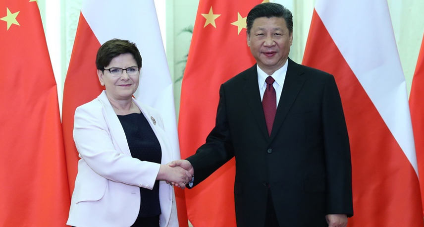 习近平会见波兰总理希德沃