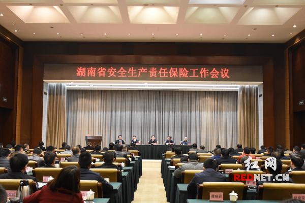 湖南省安全生产责任保险工作会议在长沙召开