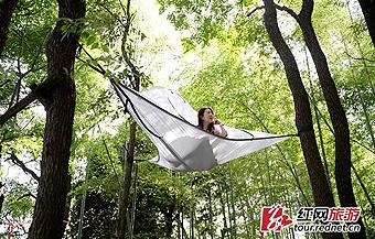 """湖南首现奇特""""树上帐篷"""""""