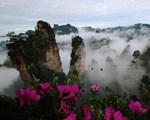 云海漫步峰林间