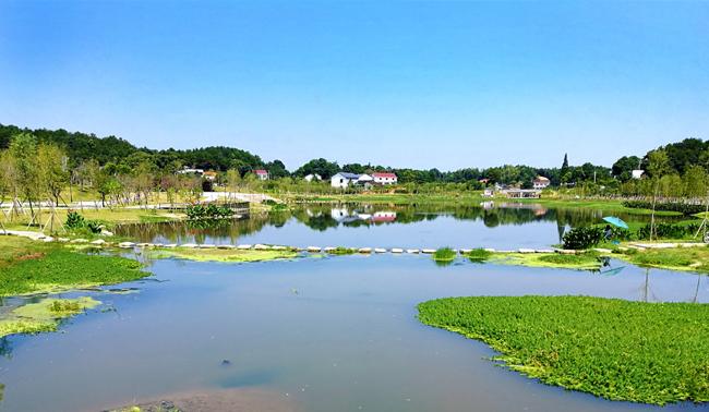 长沙县生态文明画卷:生活归于自然 大美隐于阡陌