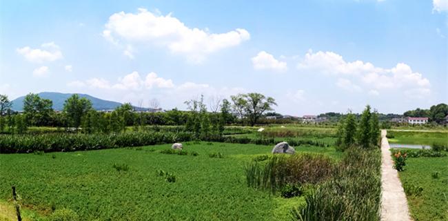 长沙县:生活归于自然 大美隐于阡陌