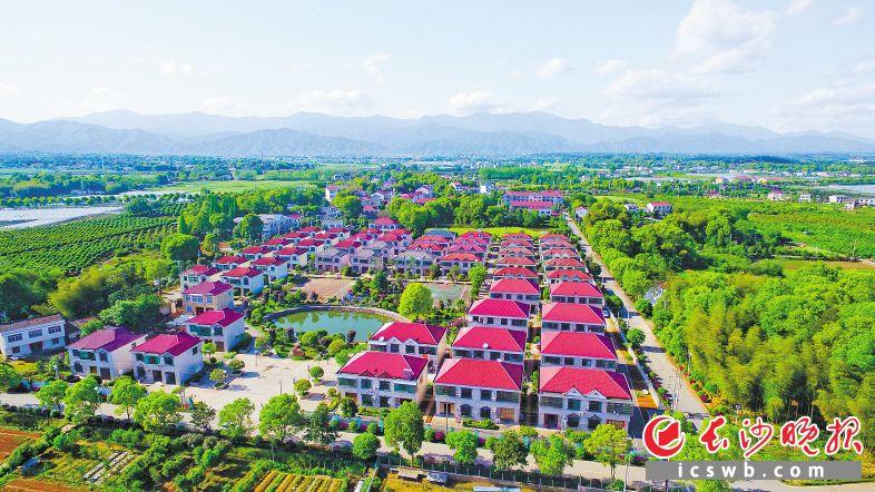 浏阳乡村处处是美景,农民生活水平显著提升,来到沿溪镇沙龙村蝴蝶花园小区,仿佛置身一个高级别墅群。