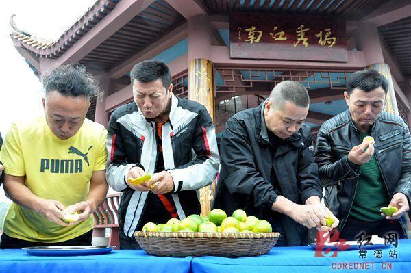 石门柑橘节浓情启幕以橘为媒助力农民增收