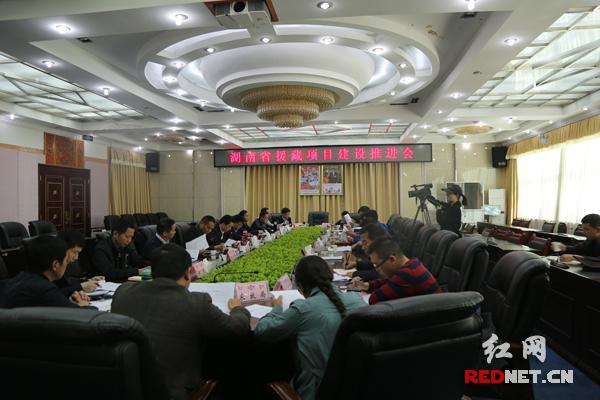 """湖南""""十三五""""对口援藏项目总投资6.2725亿元"""