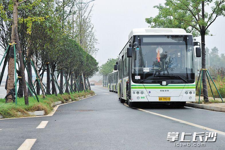 望城经开区新开通6条公交线路,解决了园区出行最后一公里问题。王志伟 摄