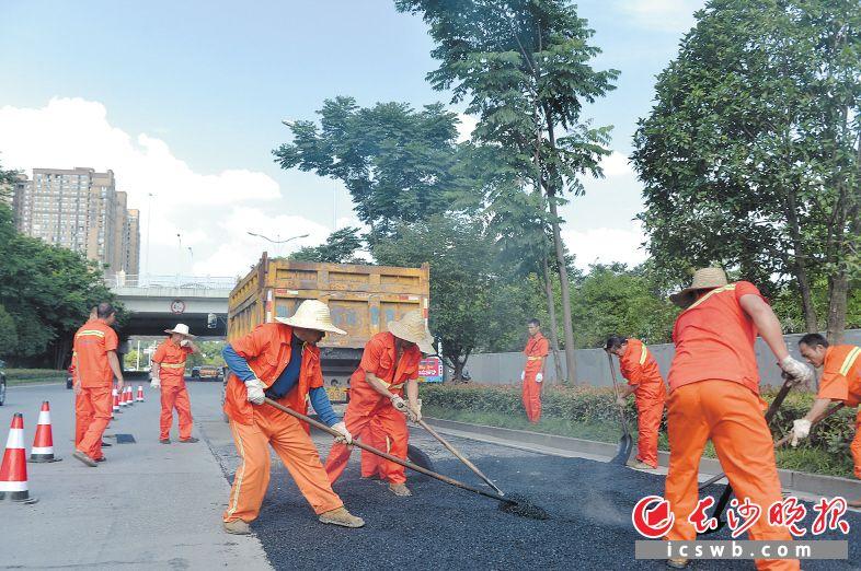 金星南路上,市政工作人员正在填补损坏的路面。 邹麟 摄