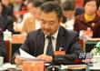 【代表之声】陈永忠:让油茶产业促湖南精准扶贫