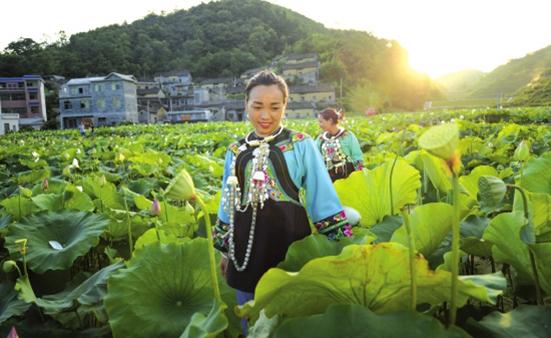 湖南通过各种方式促进农民持续增收