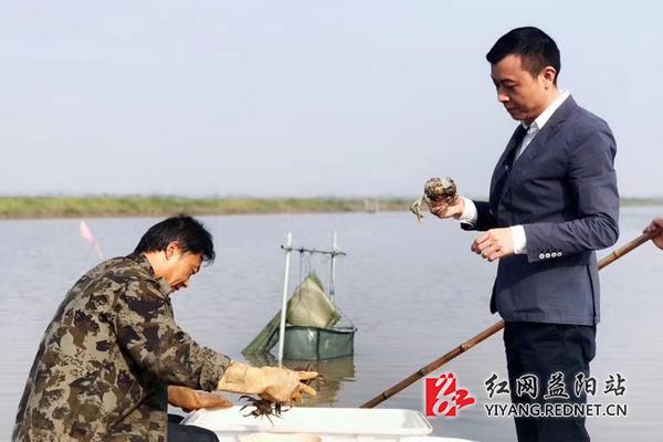 """一只螃蟹引发的大通湖""""少爷""""创业路"""