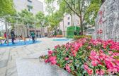 长沙:社区提质蝶变 幸福感在家门口升级