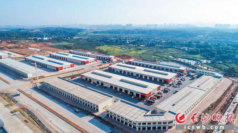 ←新建成的传化公路港成为金霞经开区的公路物流大平台。余劭劼 摄