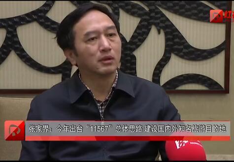 欧阳斌:五个转型升级方向助推张家界复合型产业发展