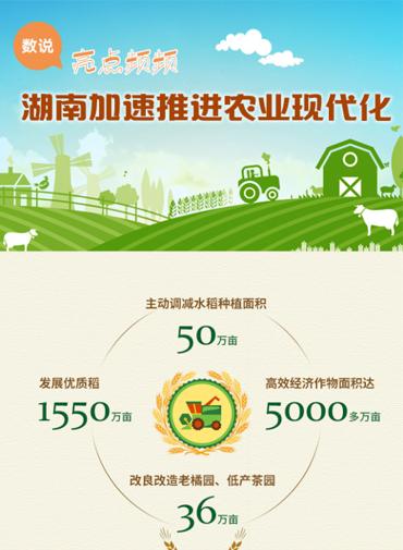 亮点频频 湖南加速推进农业现代化
