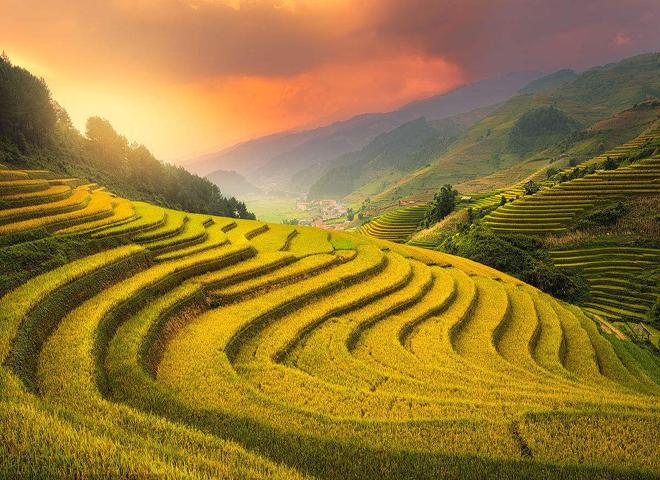 农业部与中国农业银行联合印发《通知》