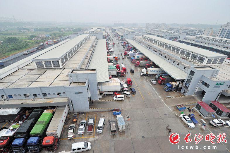 今年上半年,长沙海吉星国际农产品物流园交易量达279万吨,交易额达326亿元。