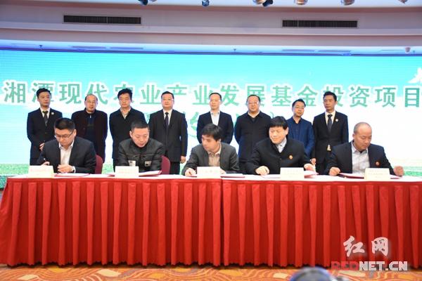 湘潭农发基金首批签约15个投资项目 谈文胜出席仪式