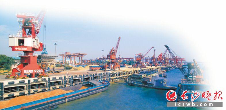 2017年,长沙预计实现进出口额130亿美元,创历史新高,图为繁忙的长沙港。 邹麟 摄