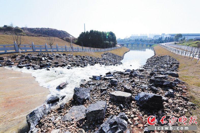 ↑圭塘河生态引水工程通水后,浏阳河的汩汩清流将解决圭塘河季节性缺水难题,并成为一道黄金水岸风景线。 李卓 摄
