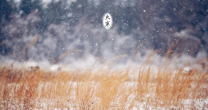大寒将至:手执书卷悦时光 大寒却暖雪晴天