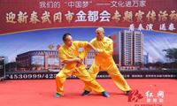 武冈:传统文化显年味武术展演贺新春