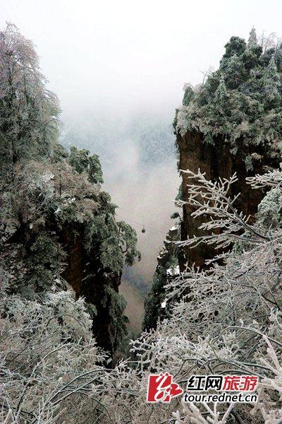 冰雪中的湖南张家界:云中漫步入仙境(图)
