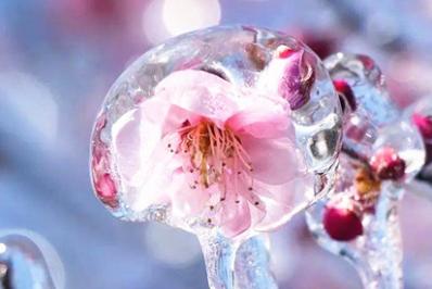 大自然的艺术馈赠:永州冰雪季绝美小景(组图)