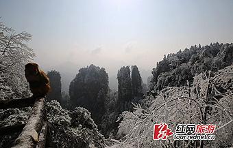 张家界黄石寨:雪后初霁景如画