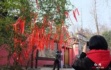 """春节星城市民""""新年登高"""" 岳麓山上来祈福"""