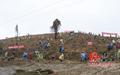 新田县领导及机关干部开展春季义务植树活动