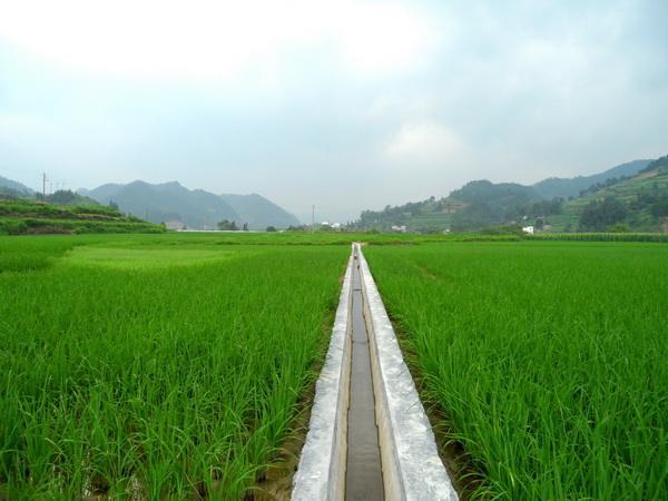 深化农田水利改革 不增加农民负担