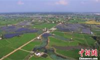 """长沙""""两型社会""""改革为经济发展积蓄""""绿色动力"""""""