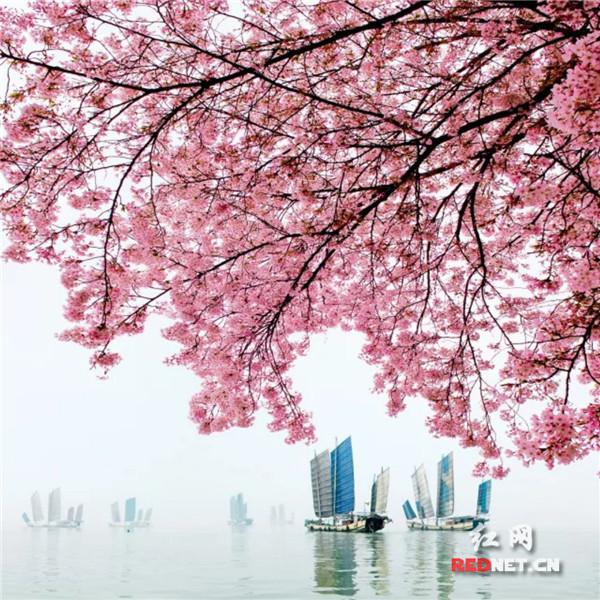 郴州人为春天写的诗