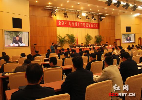 湖南今年重点打击网络传销 7月启动3个月专项行动