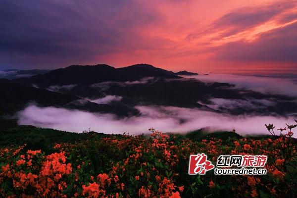 http://images.rednet.cn/articleimage/2018/05/09/162845328.jpg