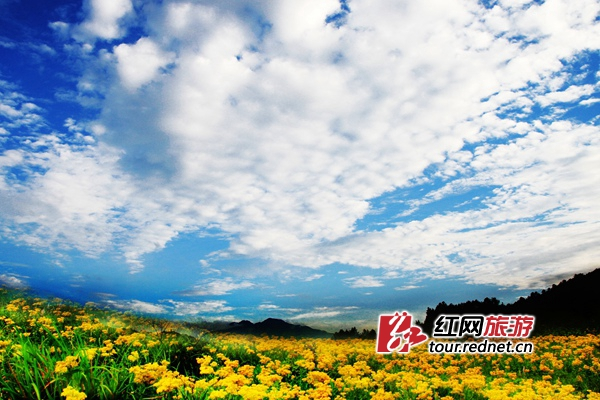 http://images.rednet.cn/articleimage/2018/05/09/162845264.jpg